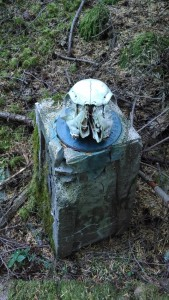 skullmarker